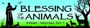 Animals web banner